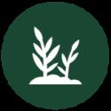 HOI icon4 72-01