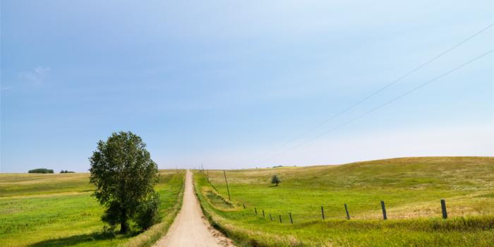 dirt road in rural area